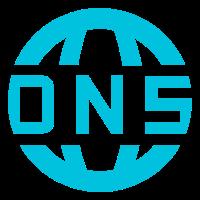 常用DNS查询