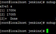 jenkins 使用其他的端口