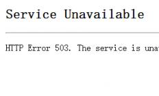 window iis 503错误