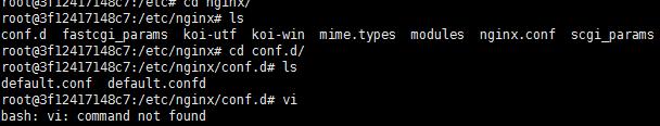 docker 容器运行中找不到vim 命令