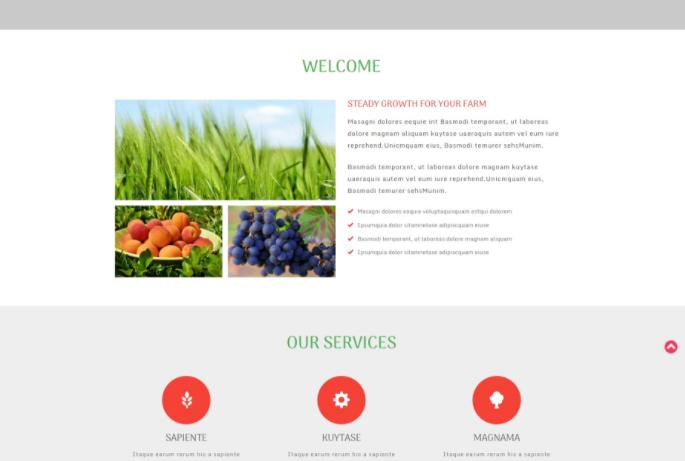 农场果蔬团队展示响应式网页模板