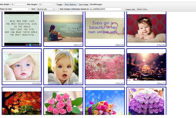 Fatkun图片批量下载 谷歌插件